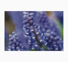 Macro Grape Hyacinth Blossoms 2 Kids Tee