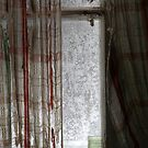 15.1.2016: Old Curtains, Frosty Window by Petri Volanen