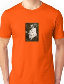 Deutzia White Spring Blossoms  Unisex T-Shirt