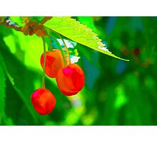 Red Cherries Painting Photographic Print
