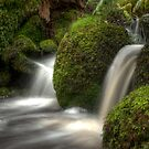 0925 Cold Waters by DavidsArt