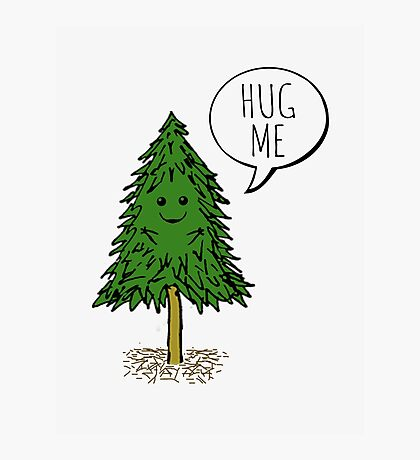 Treehugger Photographic Print