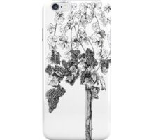 Di's vine iPhone Case/Skin
