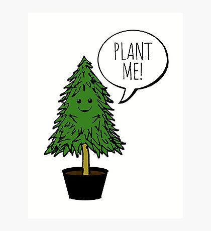 Plant More Trees Photographic Print