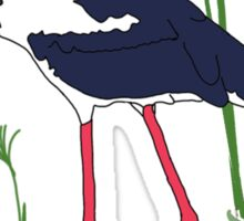 JABIRU - Black-Necked Stork Sticker