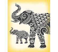 Ornamental Elephants Photographic Print
