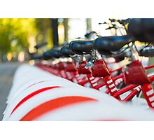 Row of bicycles Photographic Print