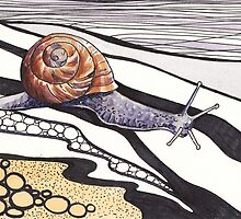 Snail Trail by Val Spayne