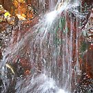 waterfall on red - Cairns, Australia by Jan Stead JEMproductions