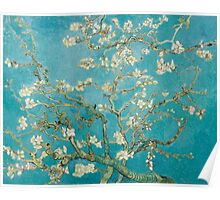 Vincent van Gogh - Branches of an Almond Tree in Blossom Poster