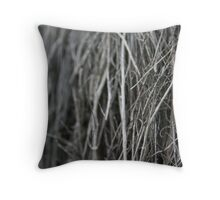 Dry twigs - 2008 Throw Pillow