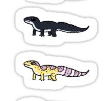 Leopard Gecko Collection Sticker