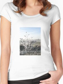White Frost Women's Fitted Scoop T-Shirt