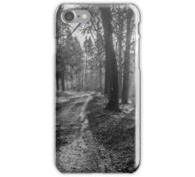 Track in Great Wood, Hambleden, Buckinghamshire iPhone Case/Skin