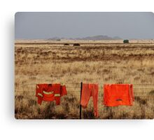 Orange on the landscape Canvas Print