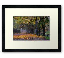 GOLDEN LEAVES Framed Print