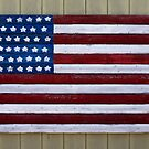 Stars & Stripes by Dave Hare
