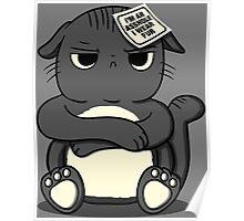 assholes wear fur - cats PETA parody Poster