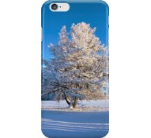 Tree in sunshine in Jamtland, Sweden iPhone Case/Skin