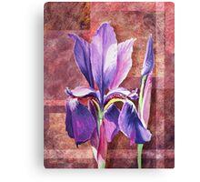 Decorative Iris Canvas Print
