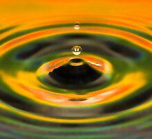 Water Drop by Richard  Windeyer