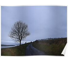 Inch island Bleakness Poster