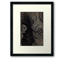 Rock Lizard Framed Print