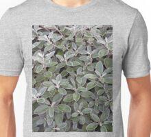 Leaves of grey Unisex T-Shirt