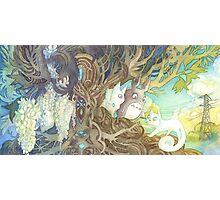 Art Nouveau Totoro and Pangur Bag from Studio Ghibli and Secret of Kells Photographic Print