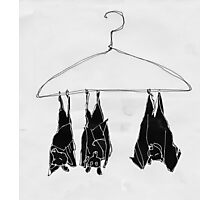fruitbats in the closet Photographic Print