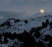 Christmas Full Moon by Betty  Town Duncan