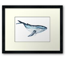 Big blue whale. Watercolor picture Framed Print