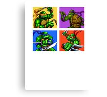 Half Shelled Heroes Canvas Print