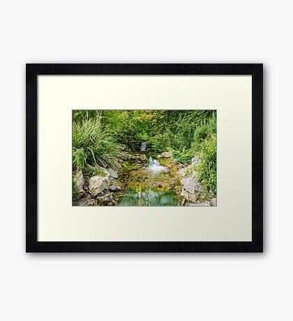 Botanical Water  Framed Print