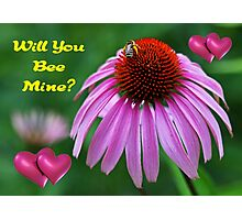 Will You Bee Mine? Photographic Print
