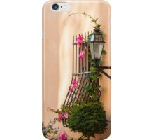Entry Statement iPhone Case/Skin
