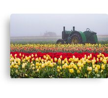 Yellow tulips and tractors Canvas Print
