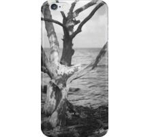 Intimate Mangrove iPhone Case/Skin
