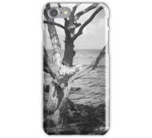 Intimate Mangrove iPhone Case/Skin