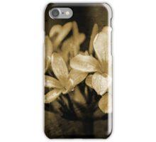 Frangipani in Sepia iPhone Case/Skin