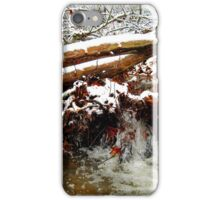 little winter waterfall iPhone Case/Skin