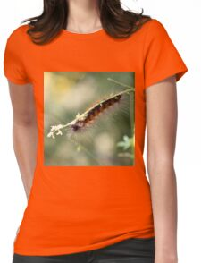 Hang in There Fuzzy Caterpillar 3 Womens Fitted T-Shirt