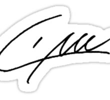 Liam Payne's Signature  Sticker