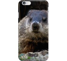 "Backyard Friend ""Walter"" iPhone Case/Skin"