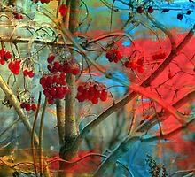Winter berries by francelal