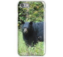 Time to pull the bird feeders down iPhone Case/Skin