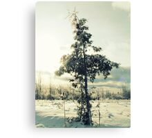Simple Nature Canvas Print