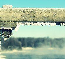 Winter frost by francelal