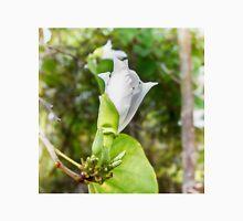 Unfolding beauty of a Butterfly tree flower Unisex T-Shirt