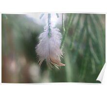 Feathery Joy Poster